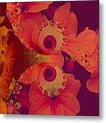 Polyanthus Spiral Metal Print by Nancy Pauling