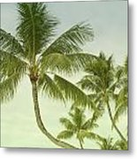 Polynesia Palm Trees Metal Print