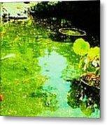 Pond 1 Metal Print