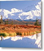 Pond, Alaska Range, Denali National Metal Print