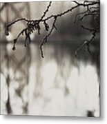 Pond And Trestle Metal Print