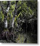 Pond Apple Metal Print
