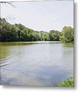 Pond At Norfolk Botanical Garden 9 Metal Print