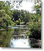 Pond At Tifft Nature Preserve Buffalo New York  Metal Print