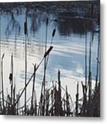 Pond At Twilight Metal Print