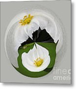Pond Flower Orb Metal Print