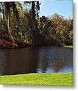 Pond In A Garden, Middleton Place Metal Print