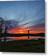 Pond In The Pasture Metal Print by Matt Molloy