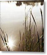 Pond Metal Print by Les Cunliffe