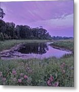 Pond Light Metal Print