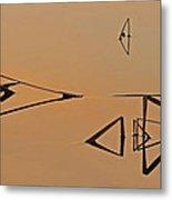 Pond Reeds Sunrise 3 Metal Print