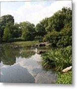 Pond Reflection - Central Park Metal Print