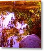 Pond Reflextions Metal Print
