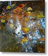 Pond Scum Metal Print