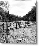 Pond Trail Adventures Metal Print by Jennifer L Washington