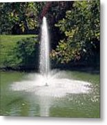 Pond With Water Feature Metal Print