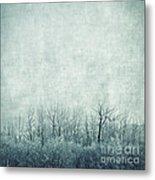 Pondering Silence Metal Print by Priska Wettstein