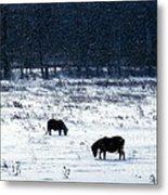 Ponies In The Snow Metal Print
