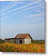 Pontotoc Shed 2am-110573 Metal Print