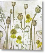 Poppies And Helenium Metal Print