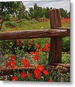 Poppies At The Farm Metal Print