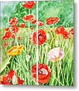 Poppies Collage I Metal Print