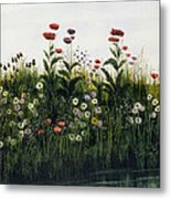 Poppies, Daisies And Thistles Metal Print