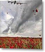 Poppies Dropped  Metal Print