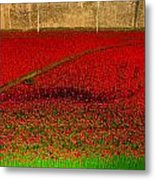 Poppies For The Fallen Metal Print by Andrew Lalchan