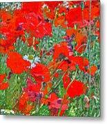 Poppies II Metal Print