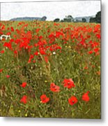 Poppies IIi Metal Print