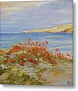 Poppies On The Beach Metal Print