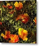 Poppies Will Make Them Sleep Metal Print