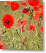 Poppies X Metal Print