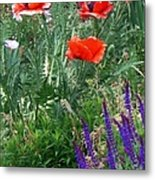 Popping Color Metal Print