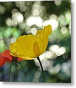Poppy At The Discoteque Metal Print