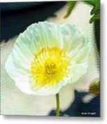Poppy Series - Beside The Sidewalk Metal Print