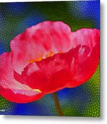Poppy Series - Touch Metal Print