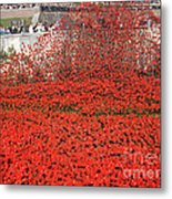 Poppy Tribute Of The Century. Metal Print