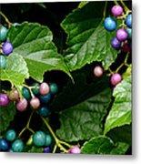 Porcelain Berries Metal Print