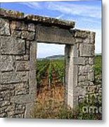 Portal Of Vineyard In Burgundy Near Beaune. Cote D'or. France. Europe Metal Print