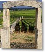 Portal  Of Vineyard.burgundy. France Metal Print by Bernard Jaubert
