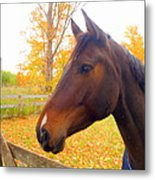 Portrait Of A Beauty Metal Print