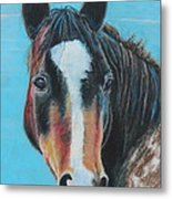 Portrait Of A Wild Horse Metal Print