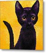 portrait of a small black cat named  LuLu Metal Print