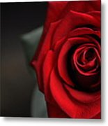 Portrait Of Rose Metal Print
