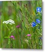 Portrait Of Wildflowers Metal Print
