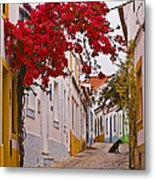Portuguese Back Street Metal Print