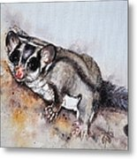 Possum Cute Sugar Glider Metal Print