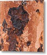 Post In Decay  Metal Print